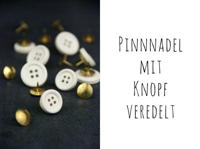 pinnadel5