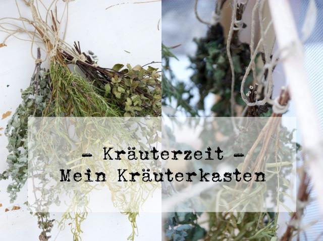 Kräuterkasten9